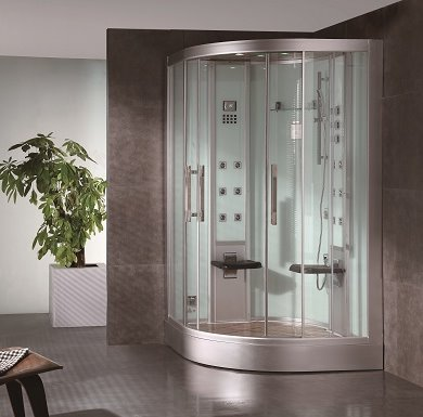 Steam Shower Features