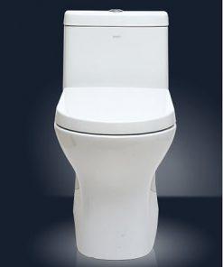 eco friendly skited toilet