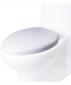 TB309 Toilet Seat